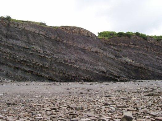 joggins-cliff